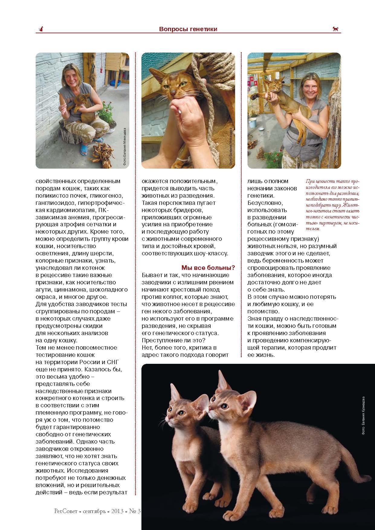 ФИНАЛ_pet_2013_3_Page_25